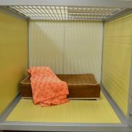 03-cozy-cabin
